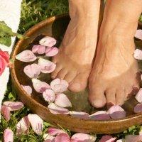Ätherisches Öl Rose: Pflanze, Herstellung, Anwendung