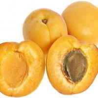 Aprikosenkern�l mit milder Zusammensetzung