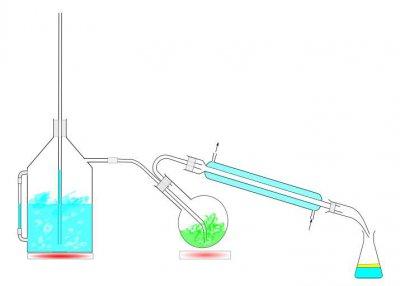 Wasserdampfdestillation