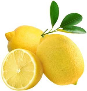 Zitronen für Zitronenöl - ätherisches Öl